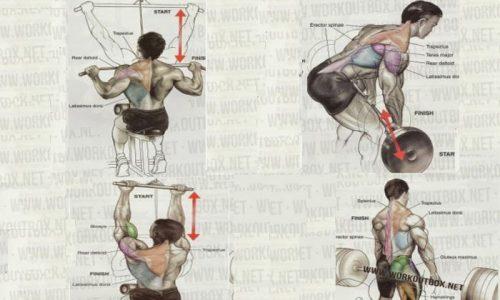 Bodybuilding: Le tecniche di allenamento
