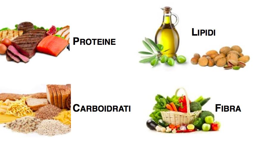 Alimentazione: I macronutrienti