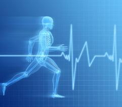 L'allenamento aerobico: Le tecniche