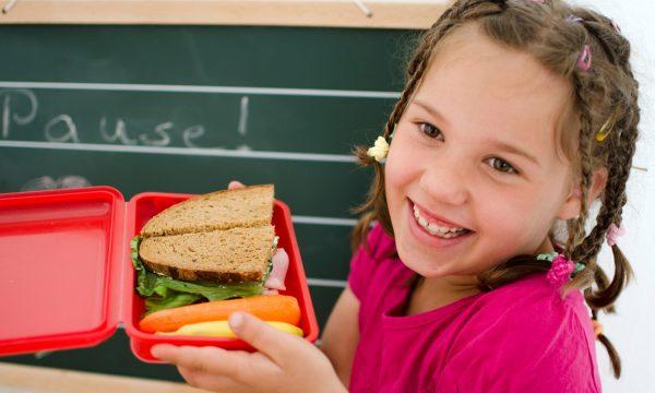 Il Rapporto Scuola – alimentazione