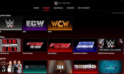 Il wrestling WWE