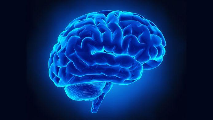 La religione - Il cervello umano è la chiave di tutto?