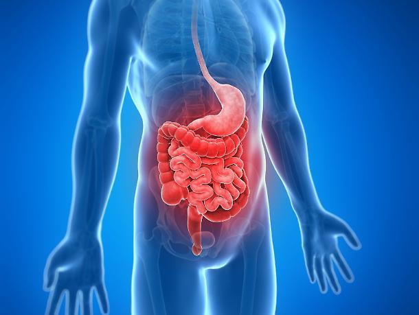 Come regolarizzare l'intestino